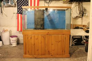 90 Gallon Allglass Aquarium Fish Tank