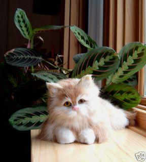 Kitty Cat Realistic Furry Animal Replica Bobblehead 19T