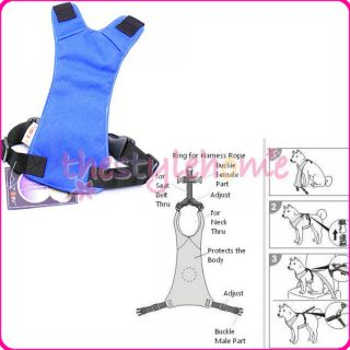 Blue Car Vehicle Dog Pet Safety Seat Belt Harness M New