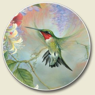 Absorbant Car Auto Boat Cup Holder Coaster Hummingbird