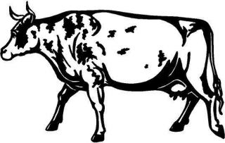 Ayrshire Cow Vinyl Decal Sticker Car Truck Window