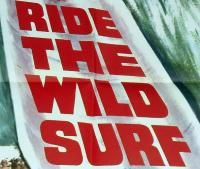 1964 Ride The Wild Surf Fabian Barbara Eden RARE Movie Poster 27x41 N