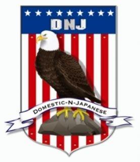 DNJ Engine Components PR608A Engine Piston Ring Set