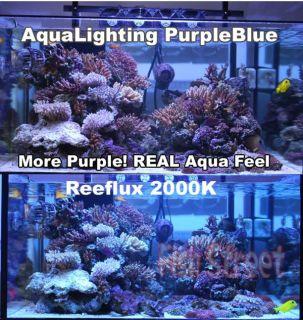 aqua lighting 250w purple blue compare vs with reeflux 20000k blue