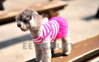 Colors! Blue Pink Rabbit Lace Hot Pet Dog Clothes Puppy Summer Dress