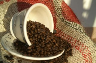 15 lbs Brazil Cerrado Arabica Natural 17 18 Screen Coffee Beans