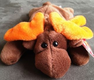 TY BEANIE BABIES CHOCOLATE THE MOOSE BEAR RARE ORIGINAL 9 PVC PELLETS
