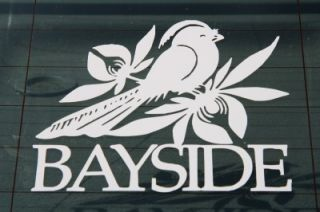 Bayside Pop Rock Band Guitar Bass Drum Auto Truck Window Decal Bumper
