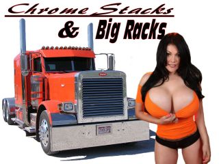 Trucker Shirt Big Rig Diesel Semi Pinup Girl Truck Driving T Shirt