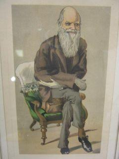 charles robert darwin framed print picture