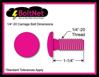 Boltnet Stainless Steel Carriage Bolt Kit 1 4 20 x 1 1 4 with Nuts