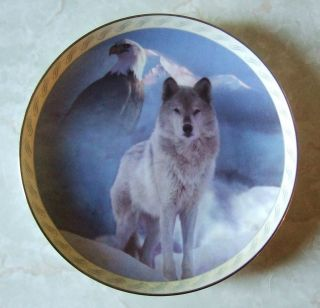 United in Spirit Wolf Eagle Bradford Exchange Collector Plate Tamoms
