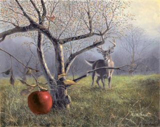 McDonald s N Canvas Buck Deer Print The Last Apple