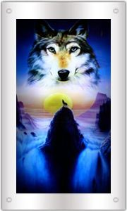 Moving Picture in Motion,Mirror Framed ,Waterfall Wolf Picture With