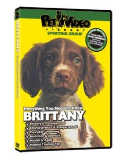 BRITTANY ~ Puppy ~ Dog Care & Training DVD New + BONUS