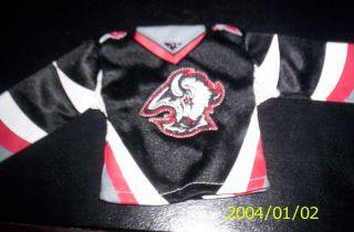 Buffalo Sabres UD Mini Jersey NHL Hockey NHL Hockey