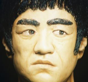 Bruce Lee Kung Fu Master Green Hornet Full Color