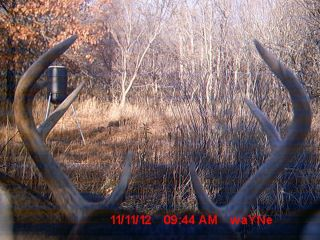 TROPHY WHITETAIL DEER HUNT 2012 UNIT 11 HOME OF THE MONSTER BUCKS