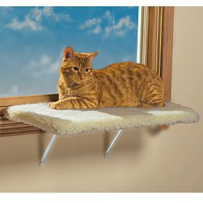 Lazy pet kitty window perch chaise cat kitten bed for Cat window chaise