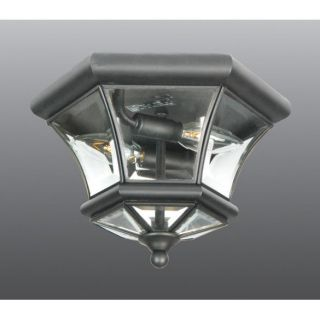 NEW 2 Light Med Outdoor Flush Mount Ceiling Lighting Fixture, Black