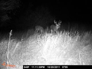 ConyersOutdoors kansas big buck hunts,,all weapons and seasons,nonres