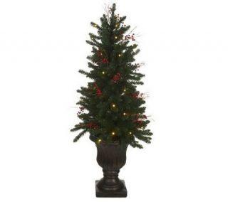 Bethlehem Lights Outdoor Safe 4 Tree in Urn w/50 LED Lights
