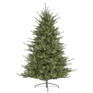 Spruce LED Warm White Clear Lights PE Tips Christmas Tree Colf