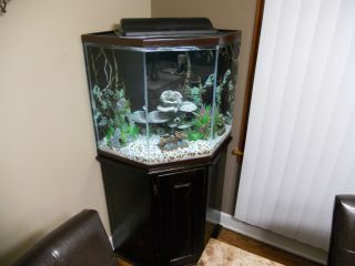 44 Gallon Corner Aquarium Fish Tank