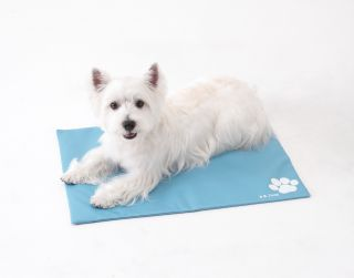 Pet Gel Cooling Cushion Mat, Naturally Cool Pad for Dog & Cat w/ Cover
