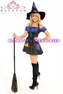 Spell Wicked Witch Halloween Scary Fancy Dress Costume Outfit