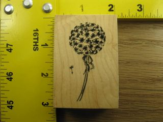 Dandelion Puff by VIP Visual Image Printery Nature Rubber Stamp 260