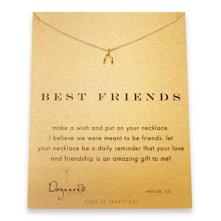 Dogeared Gold Wishbone Best Friends Reminder Necklace