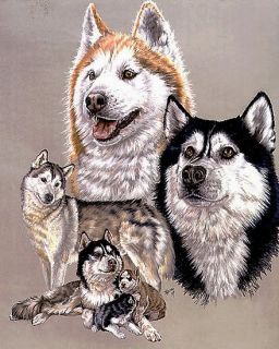 Siberian Husky Dog Counted Cross Stitch Pattern