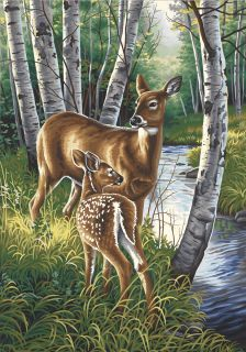 deer dimensions paint works paint by number kit white tailed deer