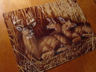 Doe Buck Deer Family Beautiful Log Cabin Lodge Decor