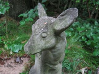 LARGE EXQUISITE WEATHERED DOE VINTAGE CEMENT CONCRETE GARDEN STATUE 19