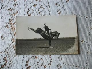 Vintage French Horse Dressage School Saumur High Step