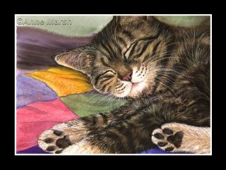 Tabby Cat Sweet Dreams Print of Painting Anne Marsh Art