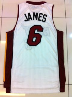 LeBron James Miami Heat #6 AUTHENTIC REV30 White Home Jersey