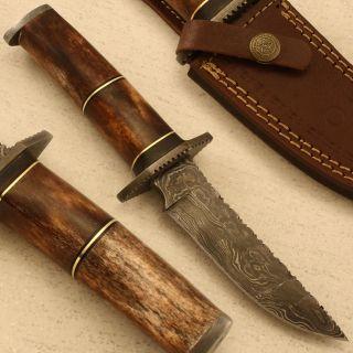 Stephen King 1 of A Kind Custom Damascus Knife Stained Camel Bone PR