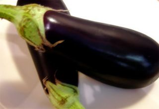Eggplant Seeds Fresh 20 Seeds Egg Plant Seed