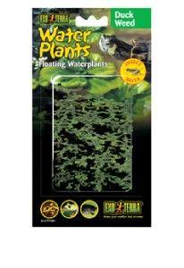 Exo Terra Reptile Plastic Water Floating Plant Duckweed