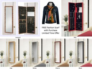 Cabinet with Dressing Mirror Door Hang or Wall Mount Jewelry Organizer