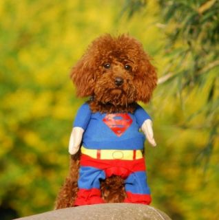 New Fashion Pet Cat Dog Puppy Cotton Clothes Costumes Superman Size XS