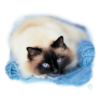 279B Birman Cat Heat Transfer T Shirt Fabric Iron On