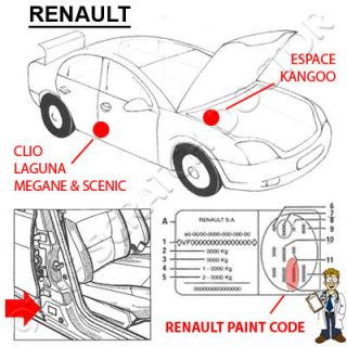Renault Paint Chip Scratch Touch Up Odyssey Blue D44