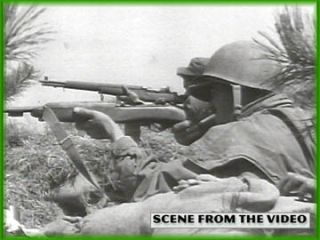 25th Infantry Tropic Lightning Division Hawaii Korea