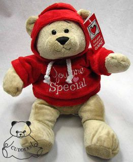You Are Special Hoodie Bear Teddy Bear Ganz Plush Toy Stuffed Animal