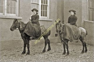 AH010 Woman Girl Horse Pony Riding Side Saddle Sidesaddle 1910s Photo