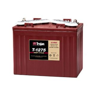 1275 12V 150AH Flooded Lead Acid Golf Cart Battery Fast SHIP